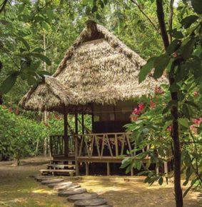El ecoturismo, una solución para la pobreza